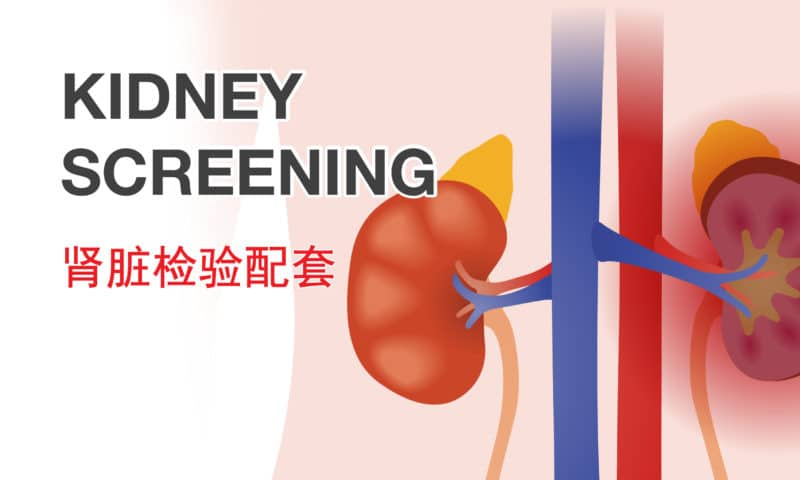 Mahkota Kidney Screening